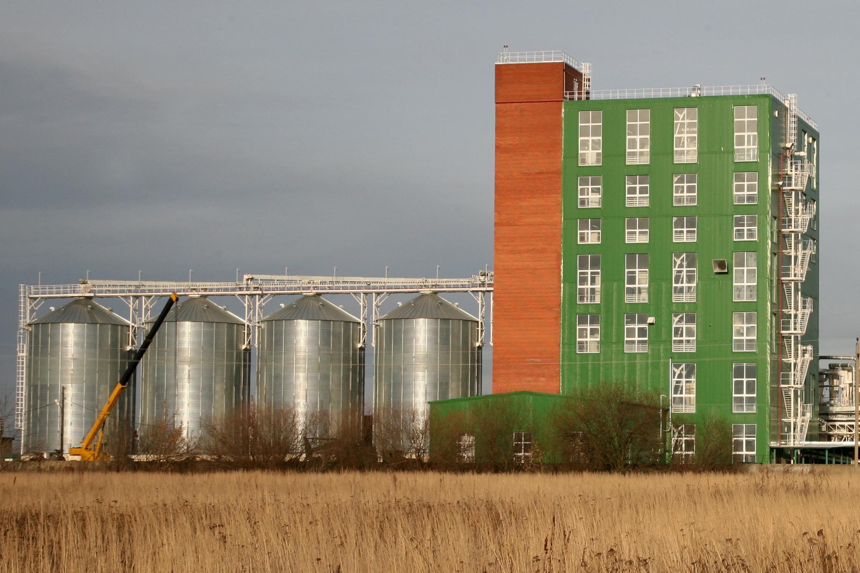 Технология зернового элеватора сырьевой конвейер для заготовки силоса